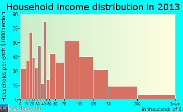 Selden household income distribution