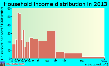 Washingtonville household income distribution