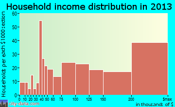 Coto de Caza household income distribution