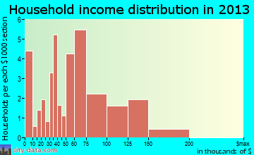 Ray household income distribution