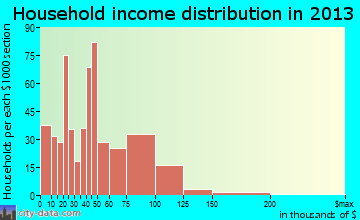 Portage Lakes household income distribution