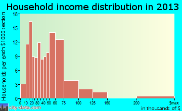 Ligonier household income distribution