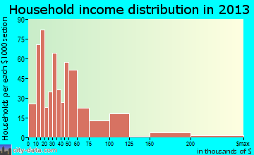 Newman household income distribution