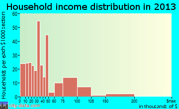 Newbern household income distribution