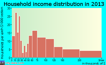Castle Hills household income distribution