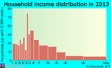 Rendon household income distribution