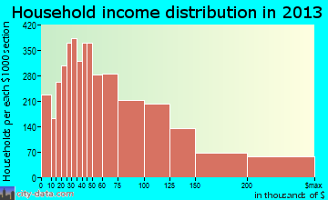 Richardson household income distribution