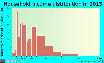 Roanoke household income distribution