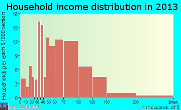 Hyde Park household income distribution