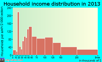 Leesburg household income distribution