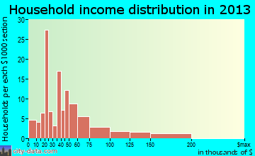 New Market household income distribution