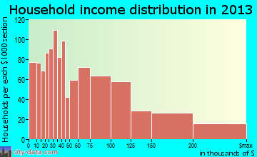 Palm City household income distribution