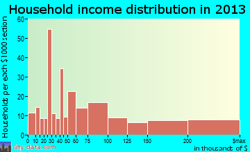 Sawgrass household income distribution