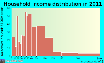 Wesley Chapel South household income distribution