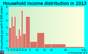 Nenana household income distribution