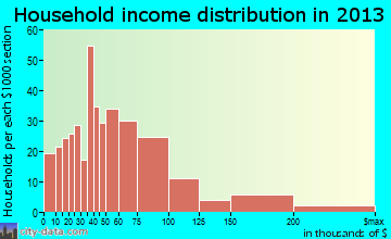 Orange City household income distribution