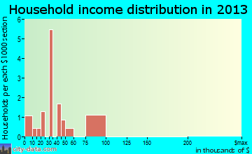 Palmer household income distribution