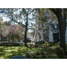 Savannah: Madison Square - Poetter Hall SCAD Admissions