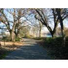 Redding: Sacramento River Trail