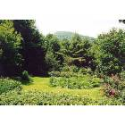 Highlands: View of Satulah Mountain from Colonial Pines Inn Bed and Breakfast