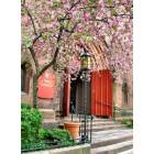 Providence: Entrance to Grace Church in Springtime