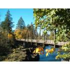 Old trestle walking bridge