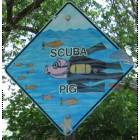 Amarillo: Scuba Pig