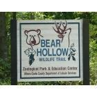 Athens: Bear Hollow Trail
