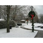 Blowing Rock: Christmas in Blowing Rock