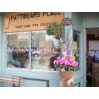 Montello: Pattibears Place