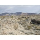 North Las Vegas: typical Mojave Desert wash