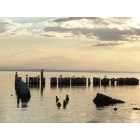 Bombay Beach: The lagoon at sunset at Bombay Beach,come and enjoy