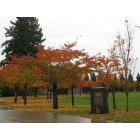 Wilsonville: Fall at the Korean War Memorial