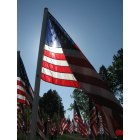 Klamath Falls: 1 of !000 flags