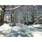 Morrisville: Snow Storm 2010