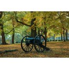 Chickamauga: Chickamauga