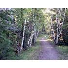 Hill City: Hiking trail at the KOA Campground - Hill City, SD