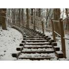 Brecksville: Winter Stairs, Deer Lick Cave Loop, Brecksville Reservation
