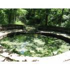 Sulphur: Spring pool at Chickasaw National Recreation Area at Sulphur, Oklahoma