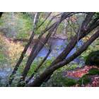 Dunsmuir: The Sacramento River in Autumn