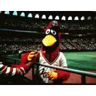 St. Louis: Fred Bird