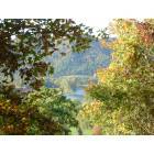 Parsons: Cheat River