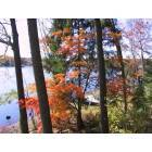 Ringwood: Erskine Lake 2006, Fall Colors