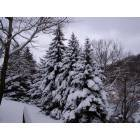 Wellsboro: When is snows in Wellsboro, Pa