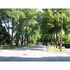 Harwood Heights: Harwood Heights residential street