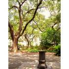Savannah: Historic square, downtown Savannah GA