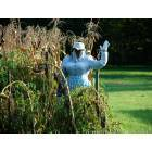 Pomeroy: Even the mute scarecrows of Pomeroy display exceptional charm. Here, an ample-bodied scare-wench, willingly agrees to her forced servitude, frightening away winged bandits with a beaming smile across her paint bucket face.