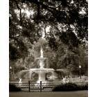 Savannah: Forsyth Park, Savannah, GA