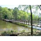 Tatum: Pedestrian Bridge to the island at Martin Creek State Park