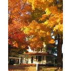 Harriman: FALL SCENE IN HARRIMAN,TN